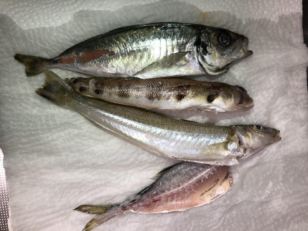 魚の下処理